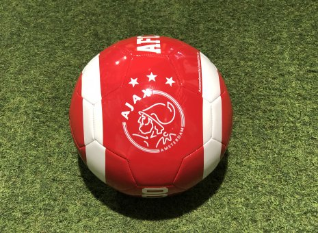 Ajax fan voetbal